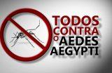 Centro de Controle de Zoonoses vs Aedes aegypti
