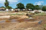 Distribuição de sementes de Ipês e Limpeza da Piscina do Bairro Ponte são ações que  marcam o início da Semana do Meio Ambiente em Caxias-MA