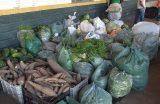 Secretaria de Agricultura, Abastecimento e Pesca de Caxias-MA distribuiu 100 toneladas de alimentos em cinco meses de gestão