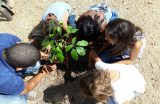 EDUCAÇÃO – U.E.M. Marcelo Thadeu realiza atividade com pais, alunos e professores sobre a preservação ao meio ambiente