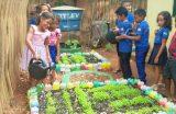 Escolas Municipais participam da Conferência da Com-Vida e da V Conferência Infanto Juvenil pelo Meio Ambiente