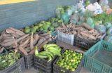 AGRICULTURA – Etapa 2018 do Programa de Aquisição de Alimentos (PAA) será lançada ainda neste mês de janeiro